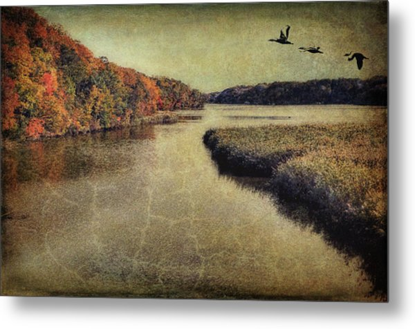 Dreary Autumn Metal Print