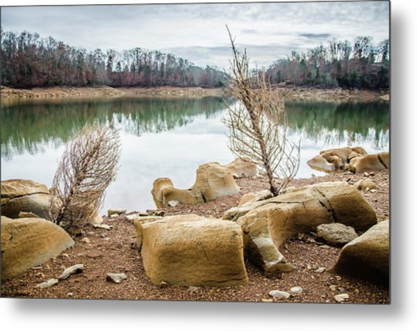 Dried Shrubs At Cherokee Reservoir Metal Print