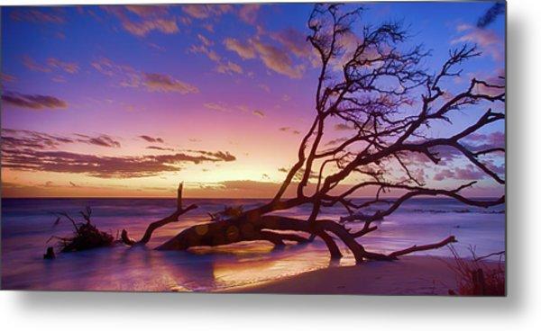Driftwood Beach 1 Metal Print