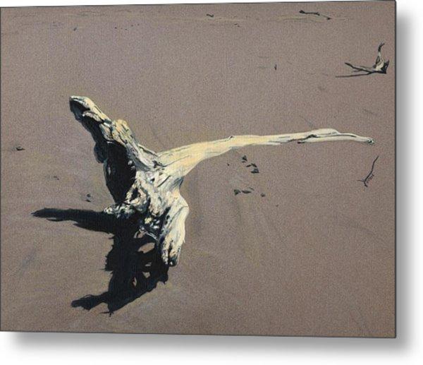 Coastal Driftwood Metal Print