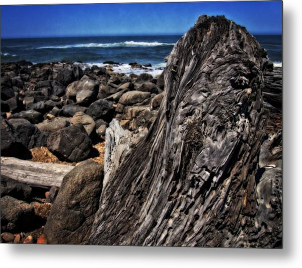 Driftwood Rocks Water Metal Print