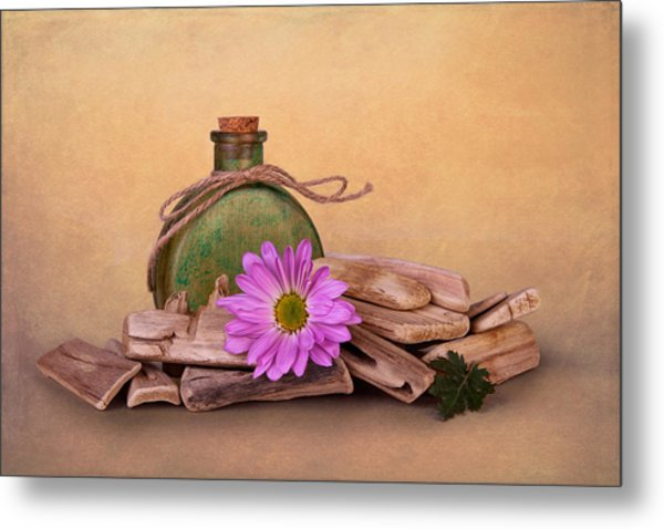 Driftwood With Daisy Metal Print