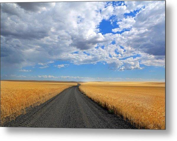 Driving Through The Wheat Fields Metal Print