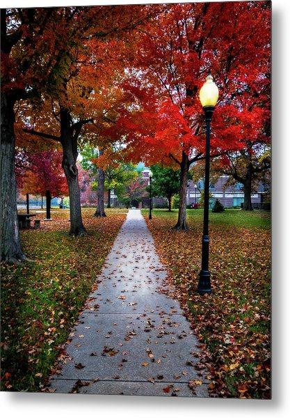Drury Fall Metal Print