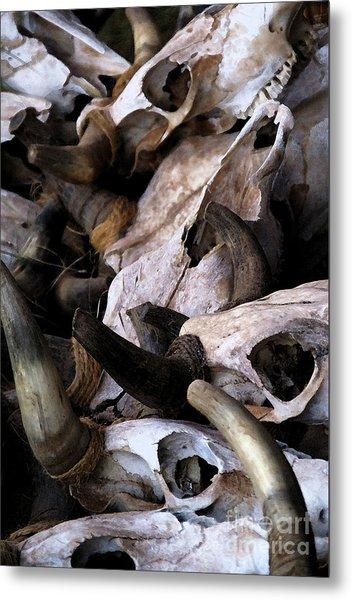 Dry As Bones Metal Print