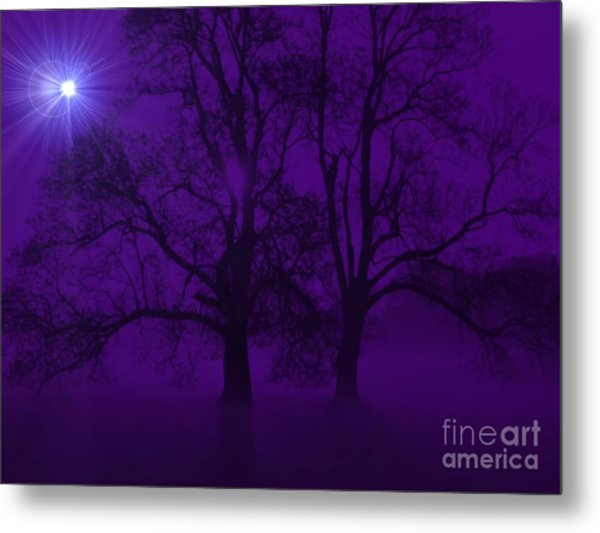 Duality On A Starry Night Metal Print