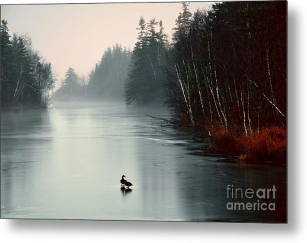 Ducks On A Frozen Pond Metal Print
