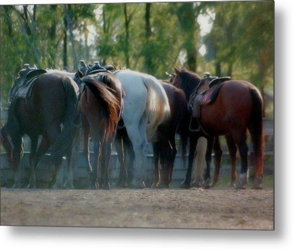 Dude Ranch Metal Print by JAMART Photography