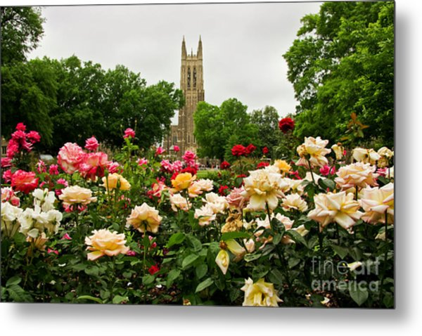 Duke Chapel And Roses Metal Print