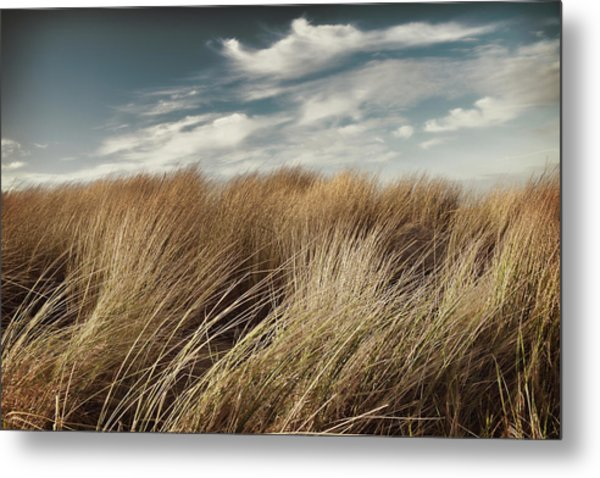 Dunes And Clouds Metal Print