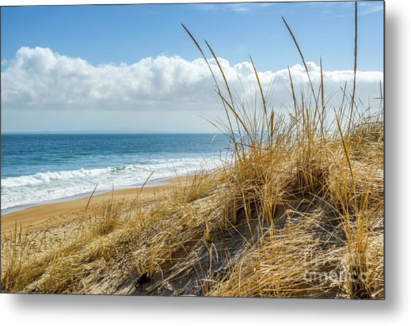 Dunes At Plum Island Metal Print