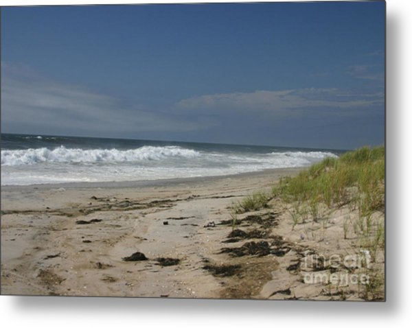 Dunes On Long Island Metal Print by Dennis Curry