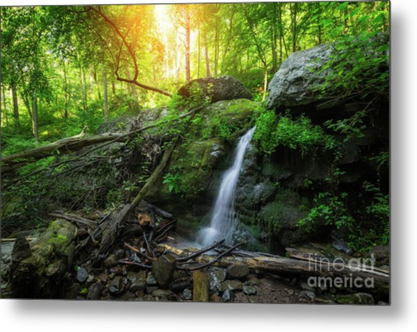 Dunnfield Creek Sunrise  Metal Print