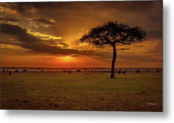Dusk Over  The Serengeti Metal Print