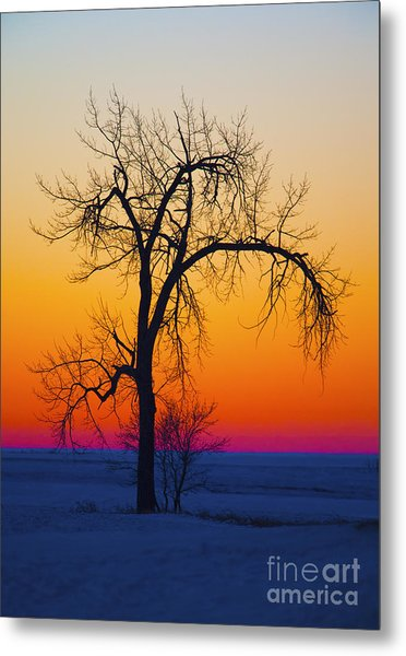 Dusk Surreal.. Metal Print