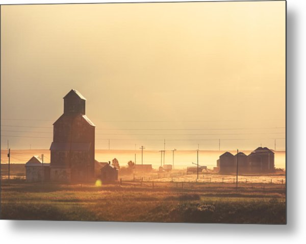 Dusty Straw Metal Print