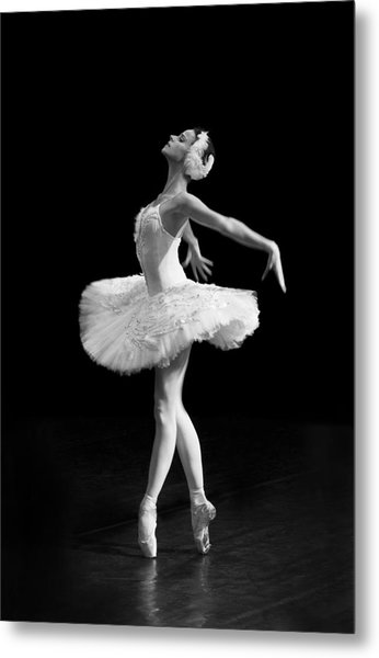 Dying Swan I Alternative Size Metal Print
