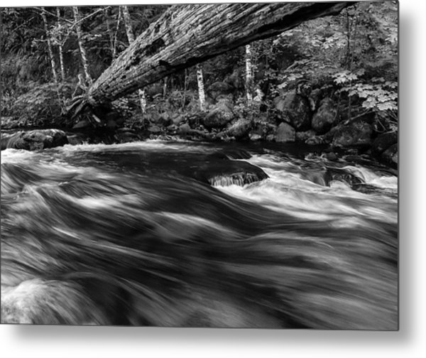 Eagle Creek  Metal Print