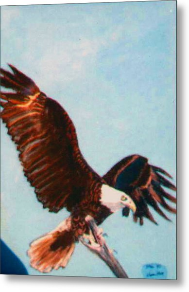 Eagle For Flight Metal Print by Stan Hamilton