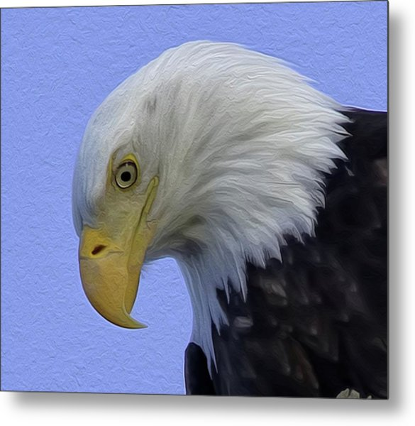 Eagle Head Paint Metal Print