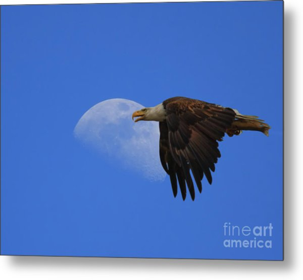 Eagle Moon Metal Print