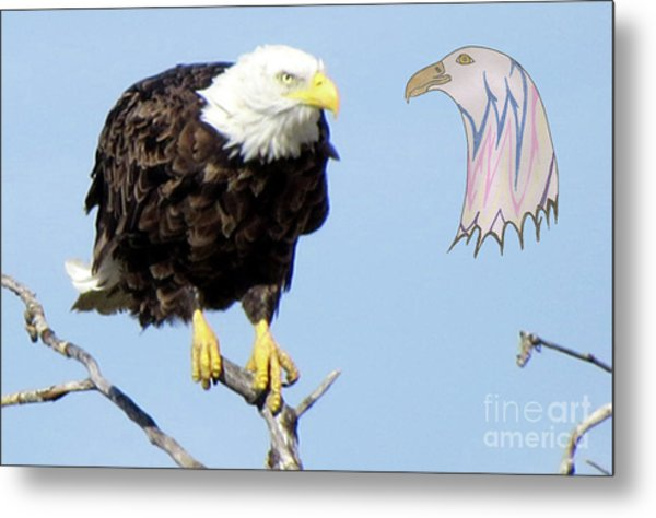 Eagle Reflection Metal Print