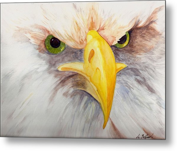 Eagle Stare Metal Print by Eric Belford