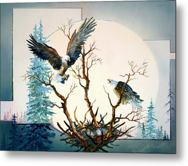 Eagles Nest Metal Print