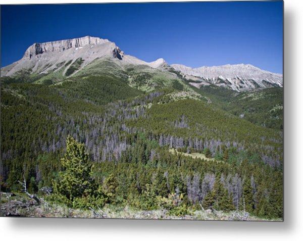 Ear Mountain, Montana Metal Print