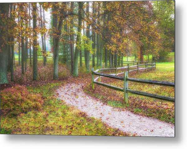 Early Autumn Stroll Metal Print
