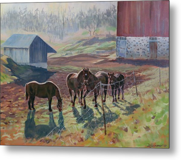 Early December At The Farm Metal Print