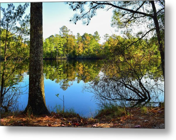 Early Fall Reflections Metal Print