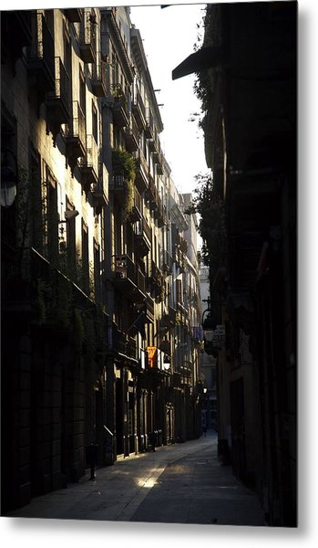 Early Light Metal Print