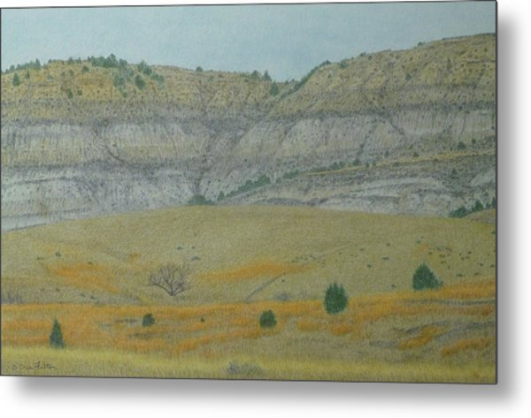 Early May On The Western Edge Metal Print