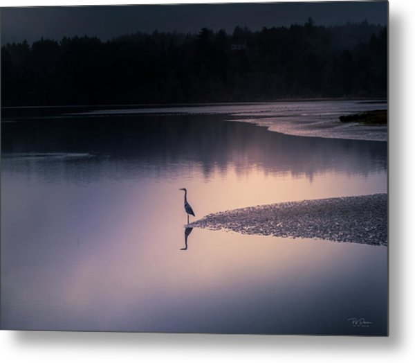 Early Morning Greeter Metal Print