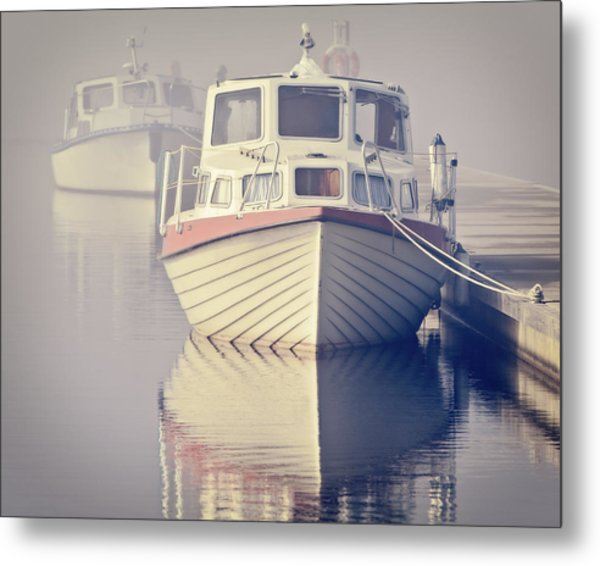 Early Morning Softness Metal Print