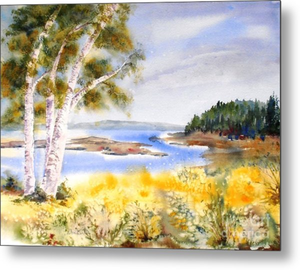 Early Summer Birches Metal Print