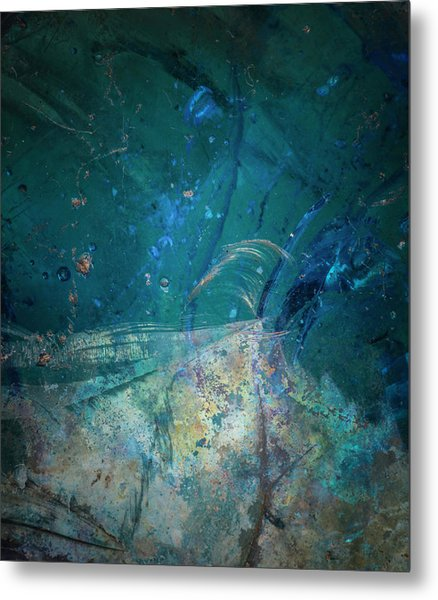 Metal Print featuring the photograph Earth Portrait 001-88 by David Waldrop