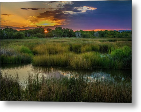 East Wetlands Sunrise Metal Print