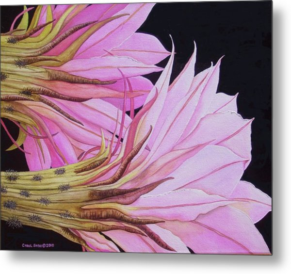 Easter Lily Cactus Flower Metal Print by Carol Sabo