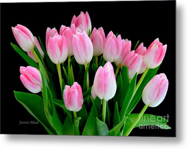 Easter Tulips  Metal Print