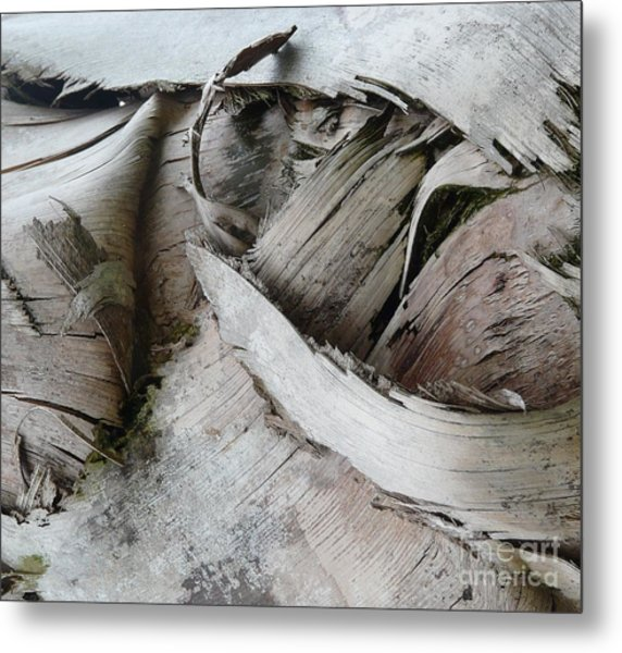 Ebb And Flow Metal Print by Donna McLarty