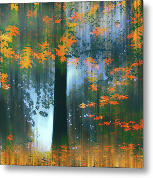 Metal Print featuring the photograph Echoes Of Autumn by Jessica Jenney