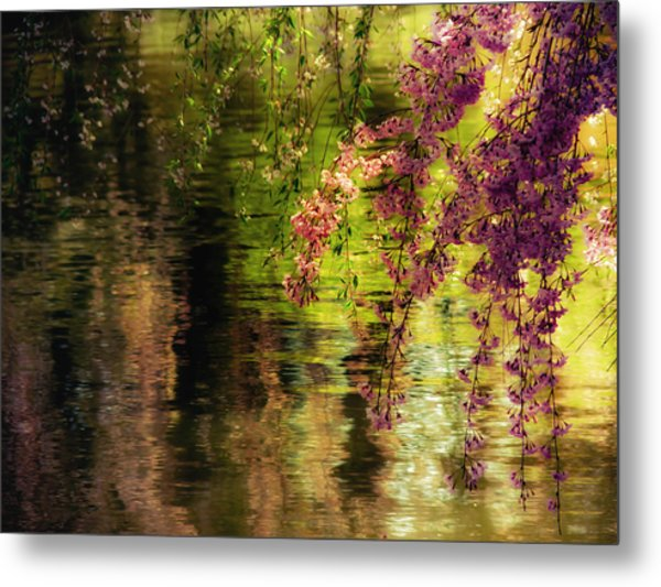 Echoes Of Monet - Cherry Blossoms Over A Pond - Brooklyn Botanic Garden Metal Print