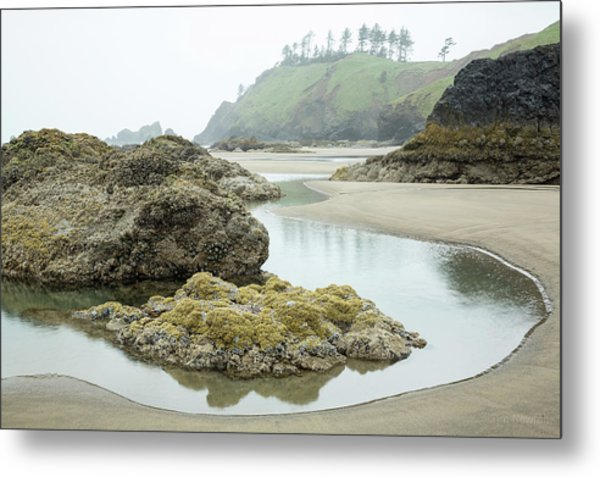 Metal Print featuring the photograph Ecola Tidepool by Tim Newton