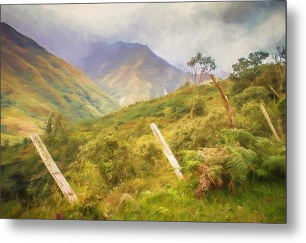 Ecuadorian Mountain Forest Metal Print