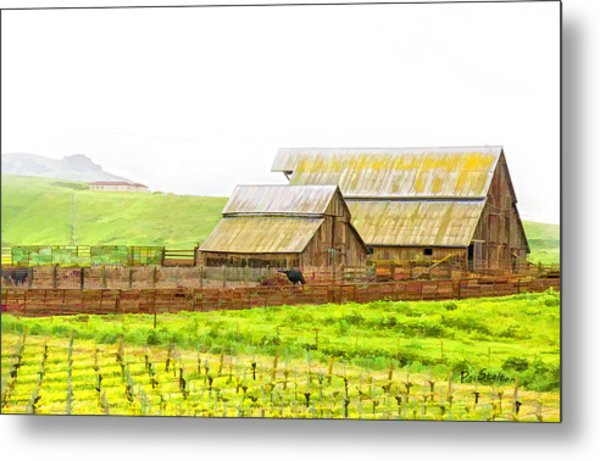 Edna Valley Ranch Metal Print by Patricia Stalter