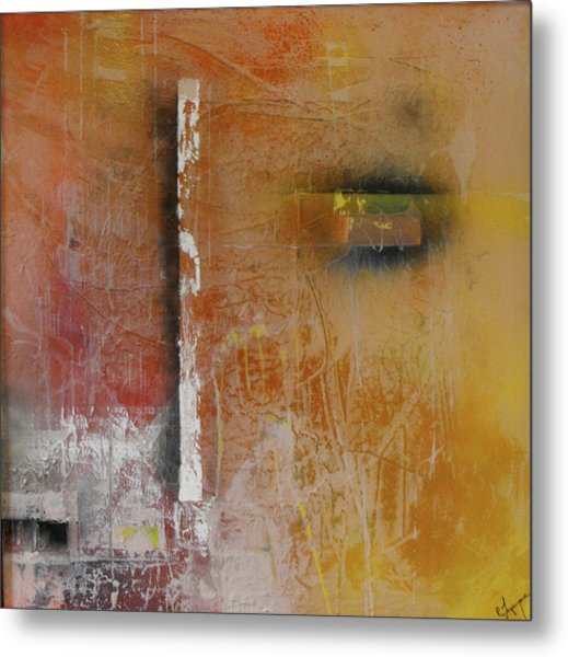 Effortless Mystery Of Trying Metal Print by Ralph Levesque