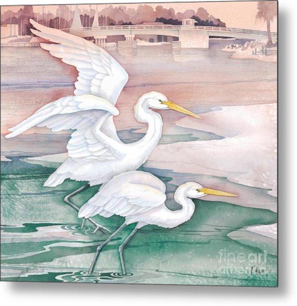 Egrets At Tarpon Dock Metal Print