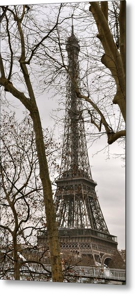 Eiffel Tower Through Branches Metal Print